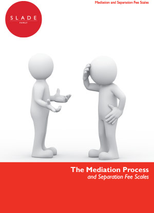 Mediation Process and Fee Scales Separation