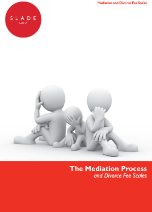 Mediation Process and Fee Scales